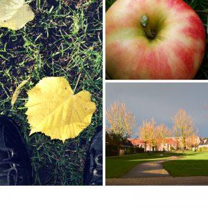 herfst mantelzorg buiten bewegen mooie momenten